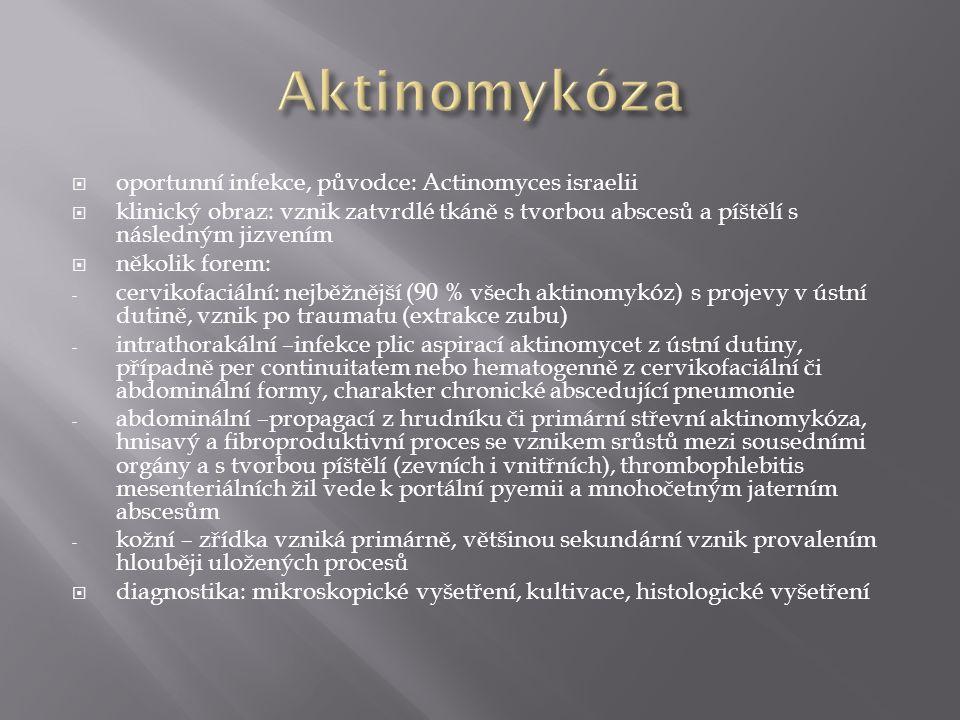  oportunní infekce, původce: Actinomyces israelii  klinický obraz: vznik zatvrdlé tkáně s tvorbou abscesů a píštělí s následným jizvením  několik f