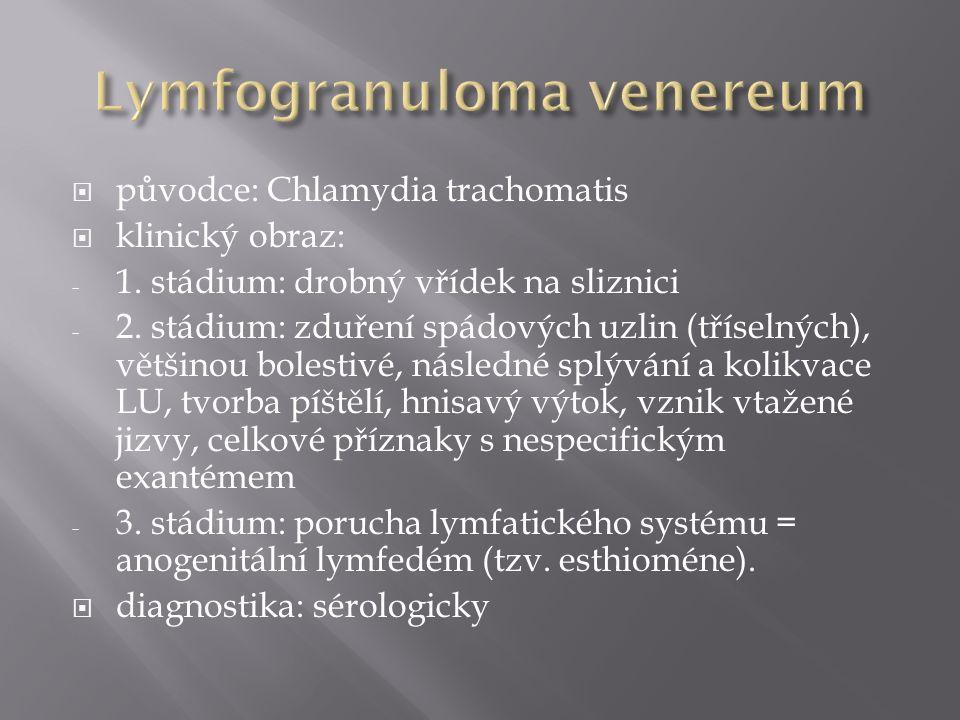  původce: Chlamydia trachomatis  klinický obraz: - 1. stádium: drobný vřídek na sliznici - 2. stádium: zduření spádových uzlin (tříselných), většino
