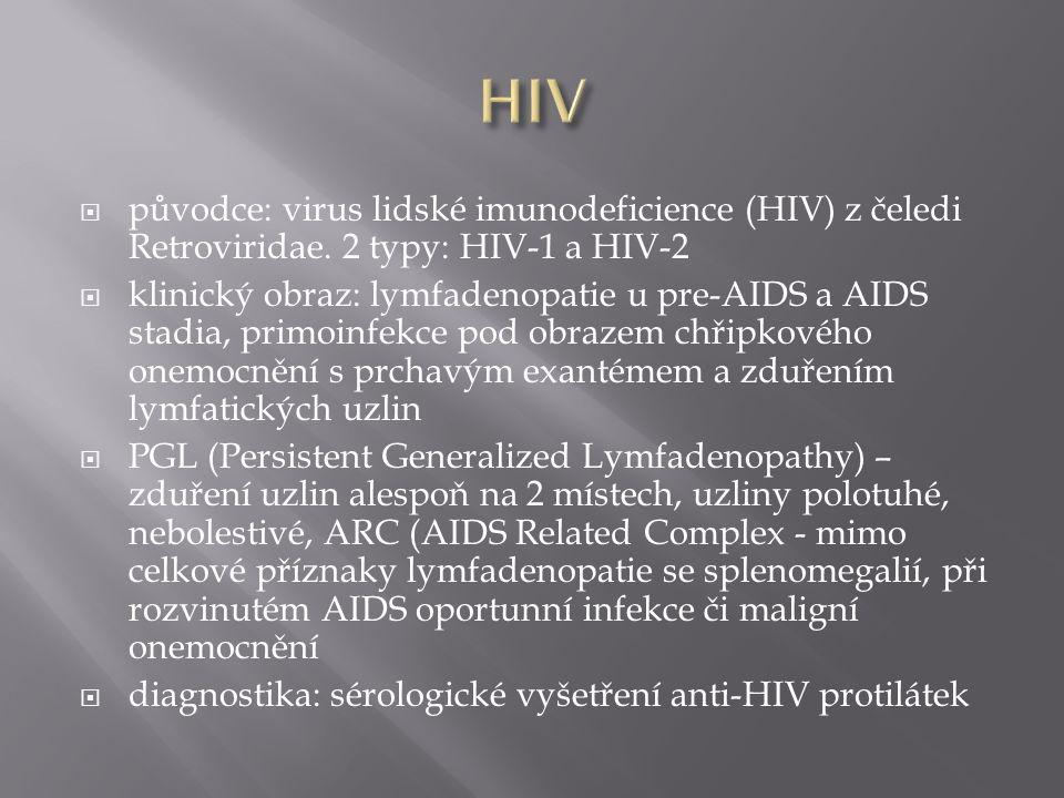  původce: virus lidské imunodeficience (HIV) z čeledi Retroviridae. 2 typy: HIV-1 a HIV-2  klinický obraz: lymfadenopatie u pre-AIDS a AIDS stadia,