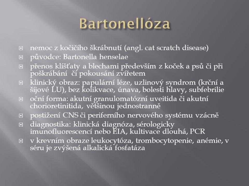  nemoc z kočičího škrábnutí (angl. cat scratch disease)  původce: Bartonella henselae  přenos klíšťaty a blechami především z koček a psů či při po