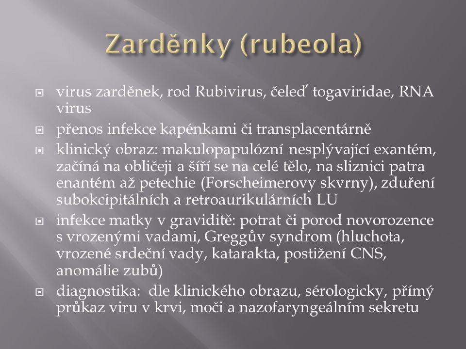  virus zarděnek, rod Rubivirus, čeleď togaviridae, RNA virus  přenos infekce kapénkami či transplacentárně  klinický obraz: makulopapulózní nesplýv