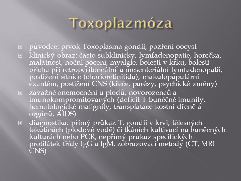  původce: prvok Toxoplasma gondii, pozření oocyst  klinický obraz: často subklinicky, lymfadenopatie, horečka, malátnost, noční pocení, myalgie, bol