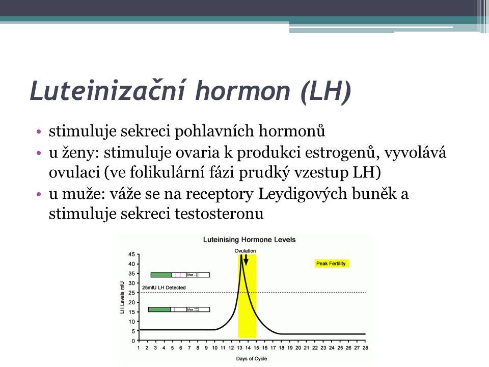 Hormony neurohypofýzy peptidové hormony velmi podobného složení, které vznikají v hypotalamu (nucleus supraopticus a nucleus paraventricularis) ▫antidiuretický hormon (vazopresin, adiuretin) ▫oxytocin oba hormony mají kromě řady funkcí (viz dále) i neuromodulační účinky, ovlivňují činnost mozku; ADH zvyšuje výbavnost paměťové stopy (zlepšuje paměť), oxytocin výbavnost snižuje