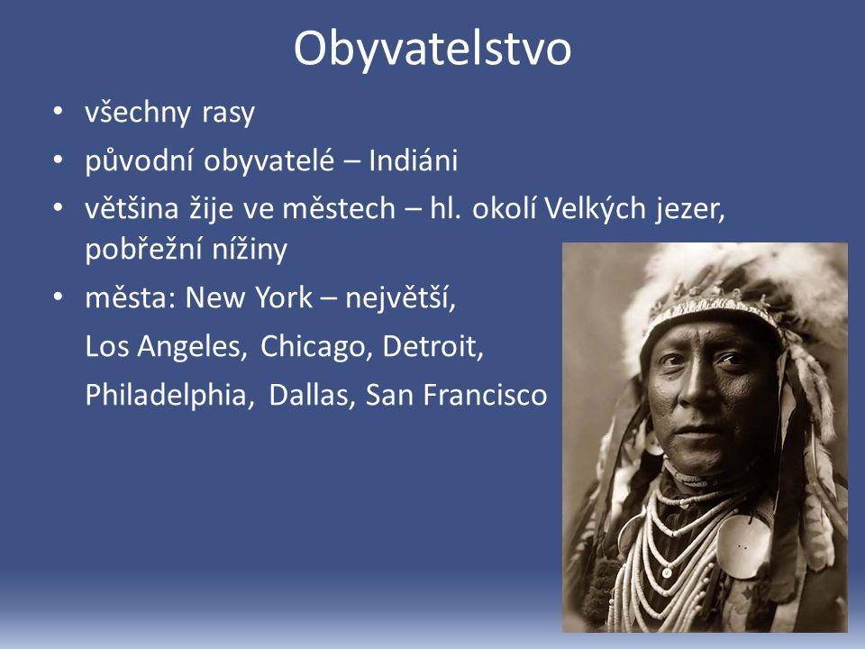 Obyvatelstvo všechny rasy původní obyvatelé – Indiáni většina žije ve městech – hl.
