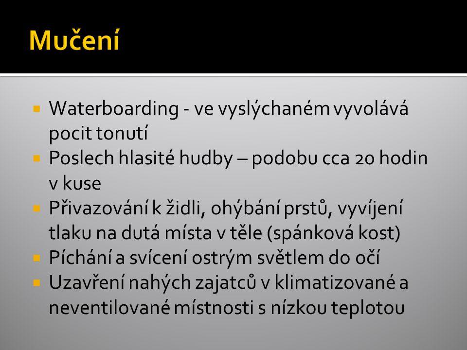  Waterboarding - ve vyslýchaném vyvolává pocit tonutí  Poslech hlasité hudby – podobu cca 20 hodin v kuse  Přivazování k židli, ohýbání prstů, vyvíjení tlaku na dutá místa v těle (spánková kost)  Píchání a svícení ostrým světlem do očí  Uzavření nahých zajatců v klimatizované a neventilované místnosti s nízkou teplotou