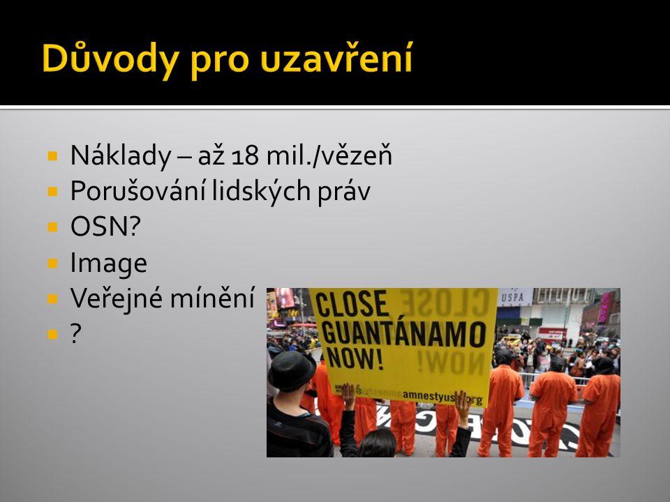 Náklady – až 18 mil./vězeň  Porušování lidských práv  OSN?  Image  Veřejné mínění  ?