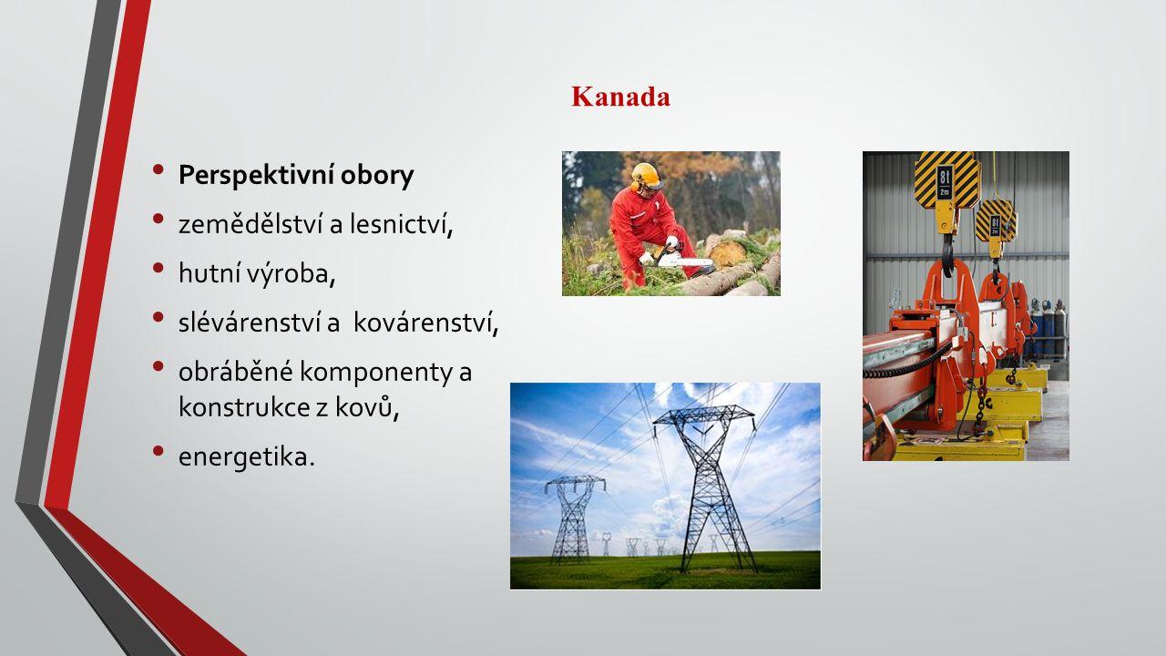 Perspektivní obory zemědělství a lesnictví, hutní výroba, slévárenství a kovárenství, obráběné komponenty a konstrukce z kovů, energetika.