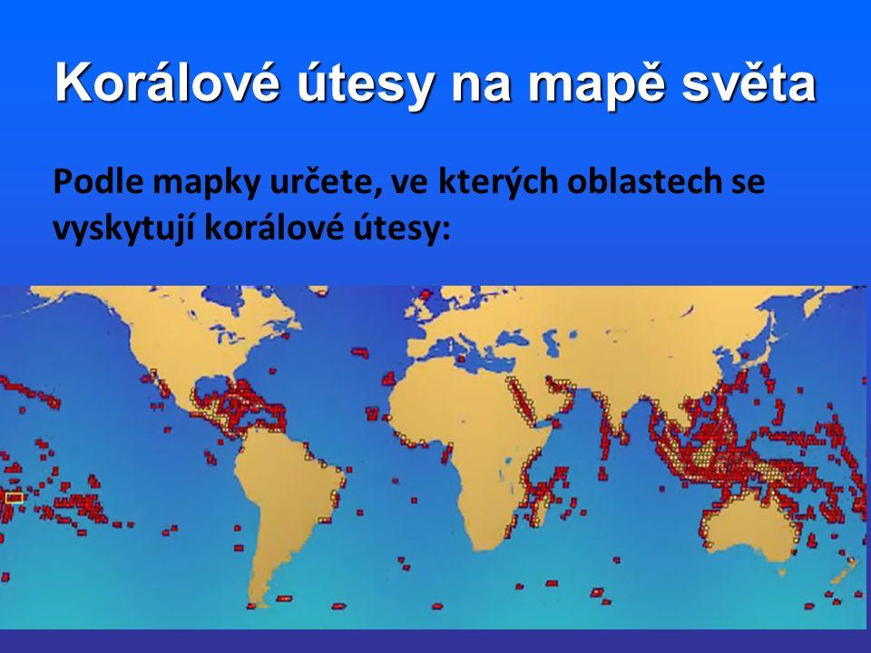 Korálové útesy na mapě světa Podle mapky určete, ve kterých oblastech se vyskytují korálové útesy: