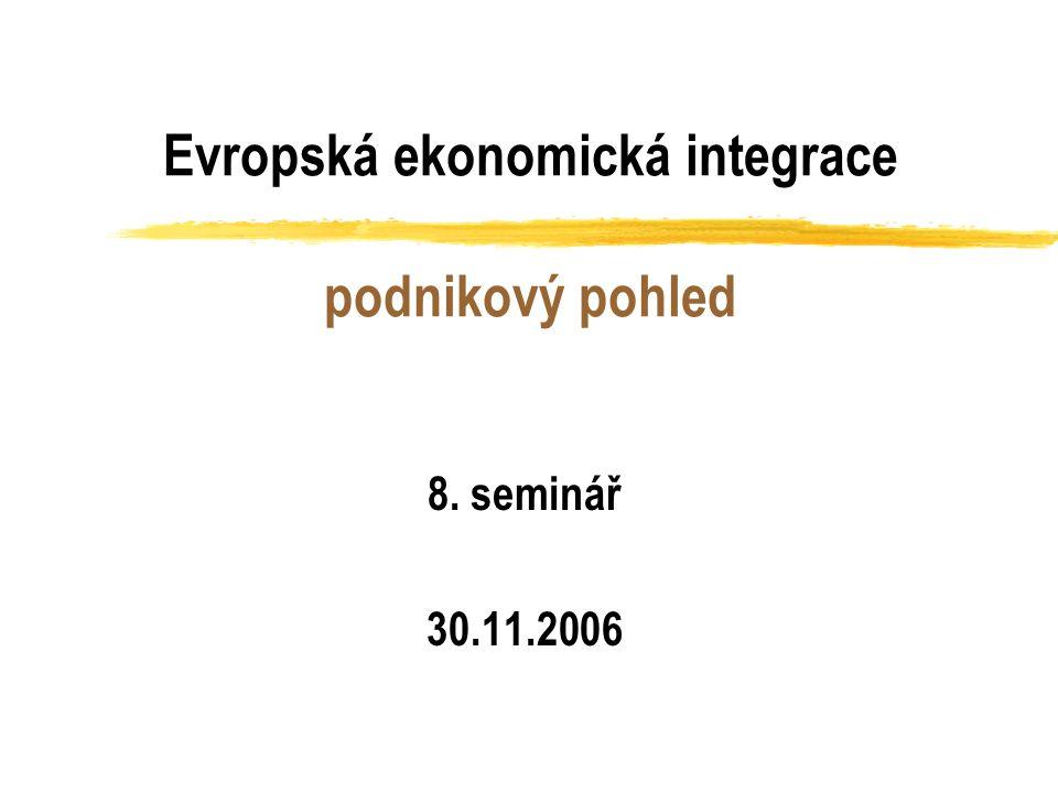 Evropská ekonomická integrace podnikový pohled 8. seminář 30.11.2006