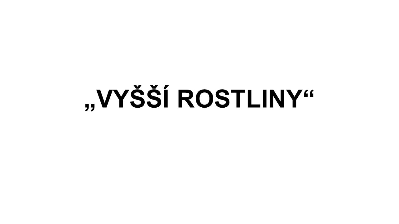 """""""VYŠŠÍ ROSTLINY"""""""