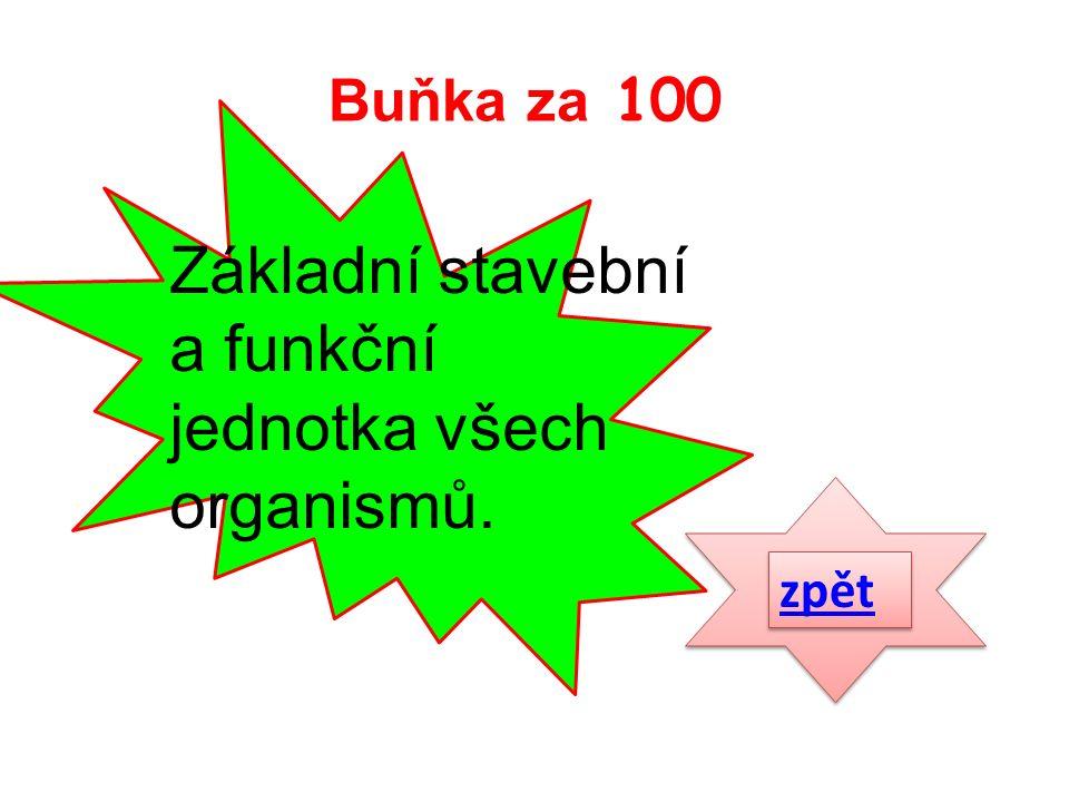 Základní stavební a funkční jednotka všech organismů. zpět Buňka za 100