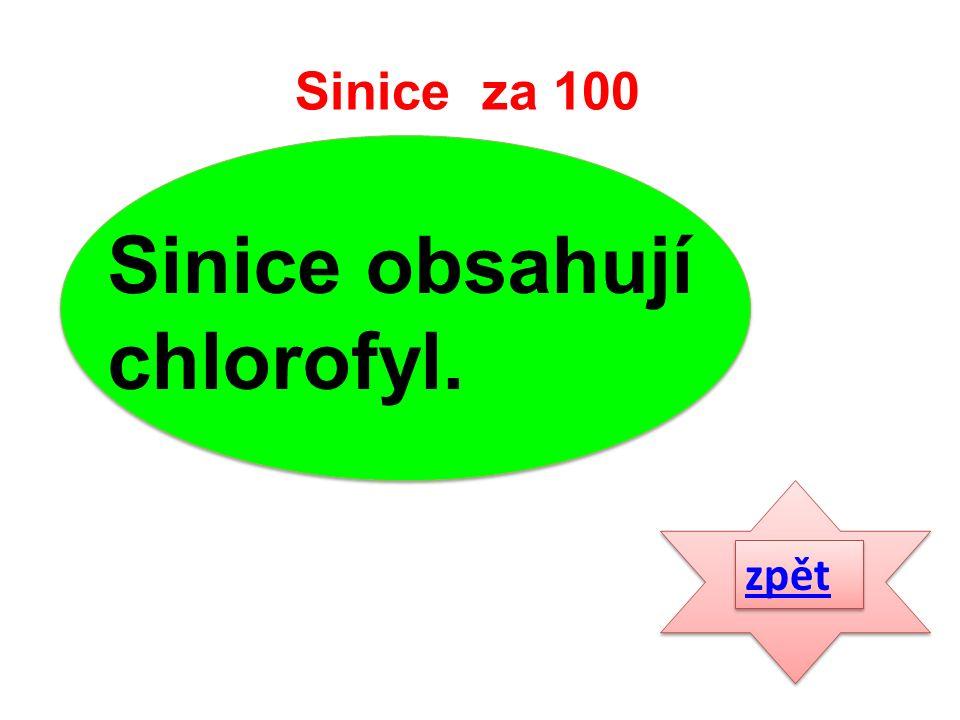 zpět Sinice obsahují chlorofyl. Sinice za 100