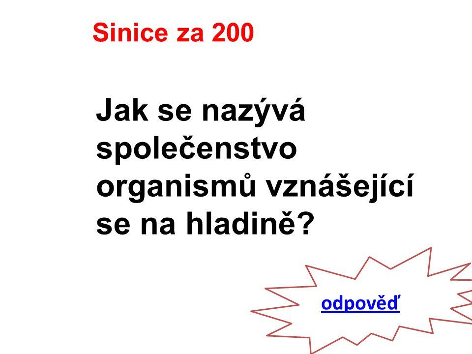 odpověď Sinice za 200 Jak se nazývá společenstvo organismů vznášející se na hladině