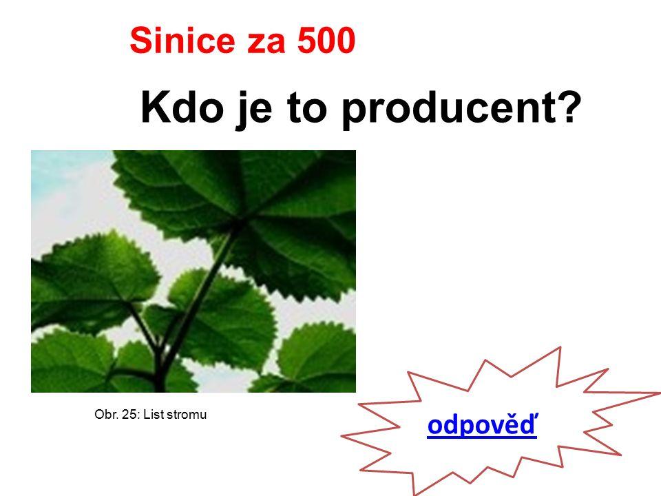 odpověď Sinice za 500 Kdo je to producent Obr. 25: List stromu