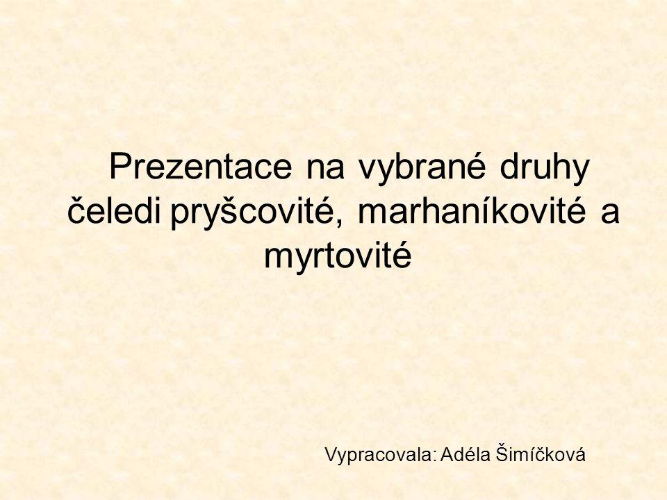 Prezentace na vybrané druhy čeledi pryšcovité, marhaníkovité a myrtovité Vypracovala: Adéla Šimíčková