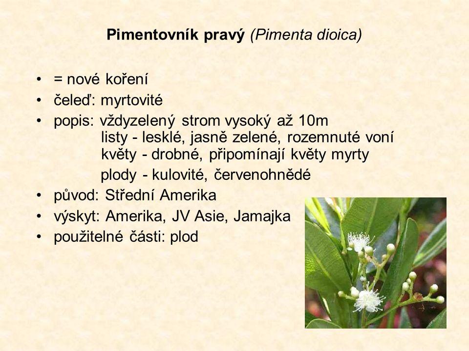 Pimentovník pravý (Pimenta dioica) = nové koření čeleď: myrtovité popis: vždyzelený strom vysoký až 10m listy - lesklé, jasně zelené, rozemnuté voní květy - drobné, připomínají květy myrty plody - kulovité, červenohnědé původ: Střední Amerika výskyt: Amerika, JV Asie, Jamajka použitelné části: plod