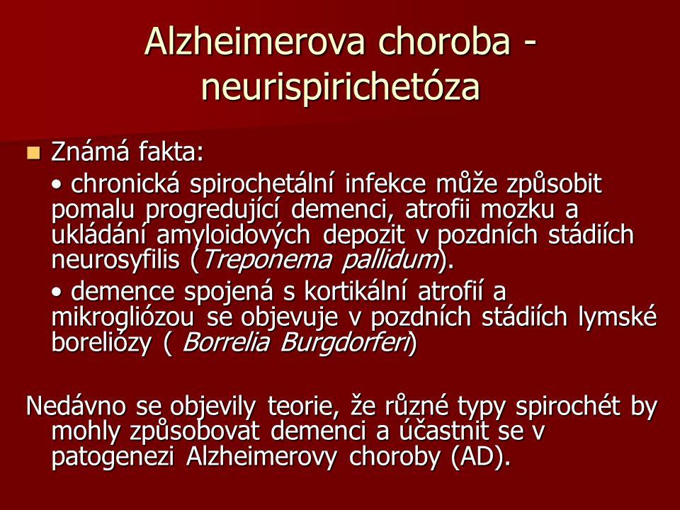Alzheimerova choroba - neurispirichetóza Známá fakta: Známá fakta: chronická spirochetální infekce může způsobit pomalu progredující demenci, atrofii mozku a ukládání amyloidových depozit v pozdních stádiích neurosyfilis (Treponema pallidum).