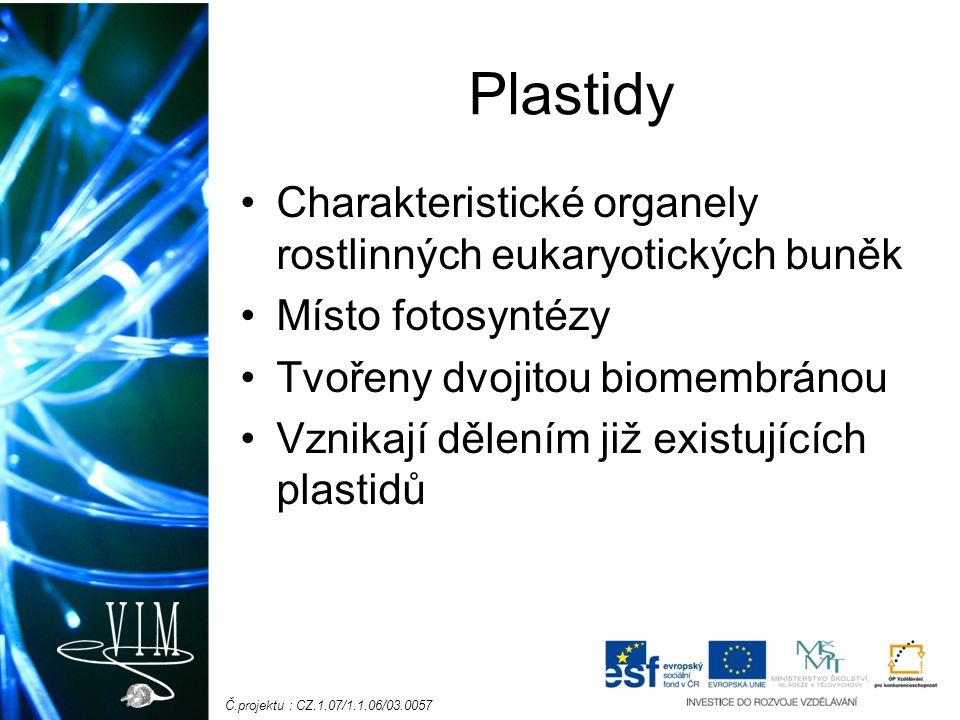 Č.projektu : CZ.1.07/1.1.06/03.0057 Plastidy Charakteristické organely rostlinných eukaryotických buněk Místo fotosyntézy Tvořeny dvojitou biomembránou Vznikají dělením již existujících plastidů
