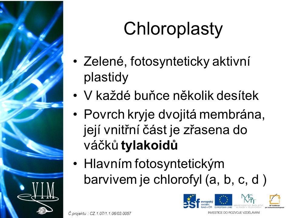 Č.projektu : CZ.1.07/1.1.06/03.0057 Chloroplasty Zelené, fotosynteticky aktivní plastidy V každé buňce několik desítek Povrch kryje dvojitá membrána, její vnitřní část je zřasena do váčků tylakoidů Hlavním fotosyntetickým barvivem je chlorofyl (a, b, c, d )