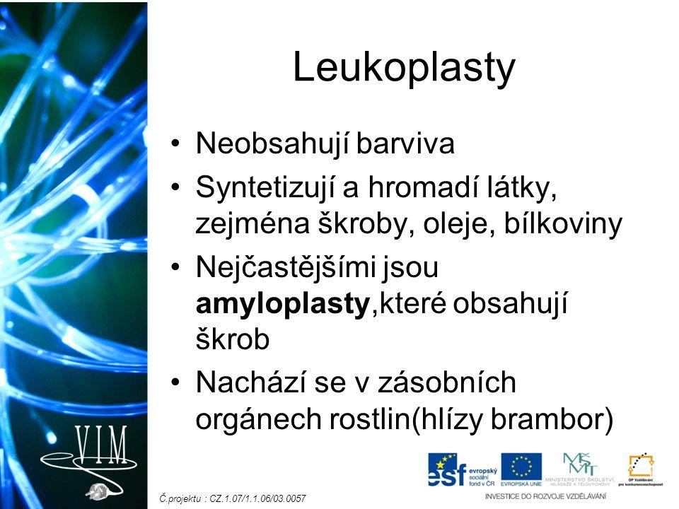 Č.projektu : CZ.1.07/1.1.06/03.0057 Leukoplasty Neobsahují barviva Syntetizují a hromadí látky, zejména škroby, oleje, bílkoviny Nejčastějšími jsou amyloplasty,které obsahují škrob Nachází se v zásobních orgánech rostlin(hlízy brambor)