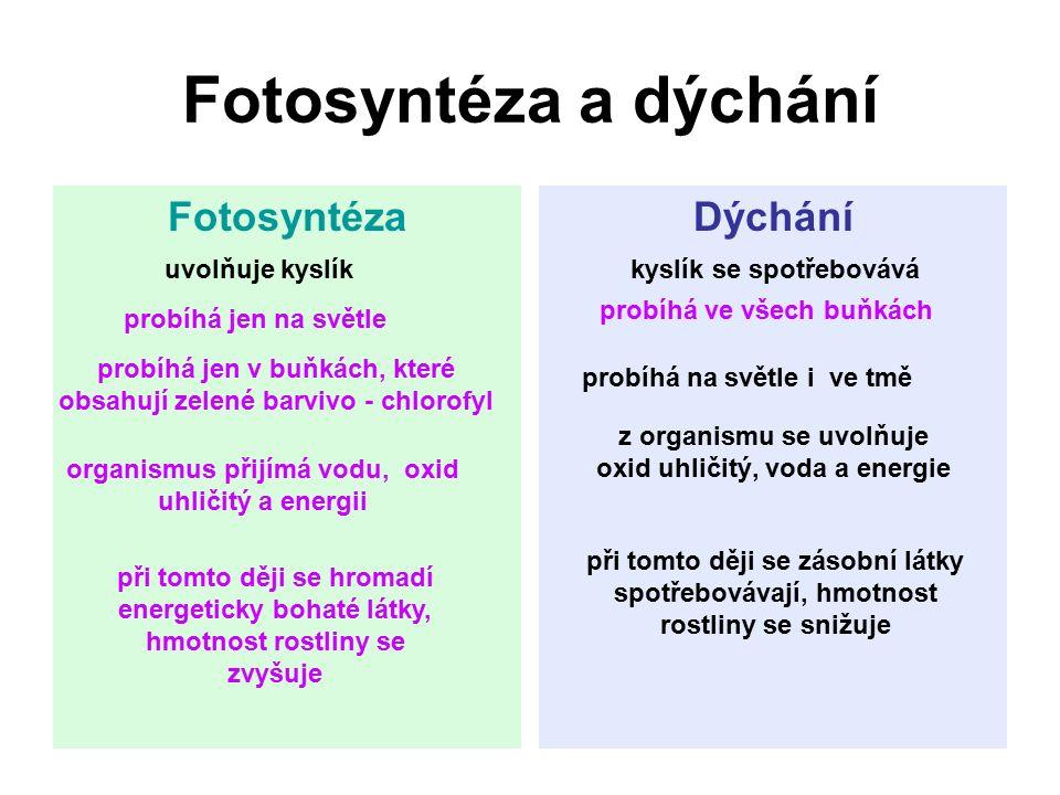Fotosyntéza a dýchání FotosyntézaDýchání uvolňuje kyslík z organismu se uvolňuje oxid uhličitý, voda a energie probíhá ve všech buňkách organismus při