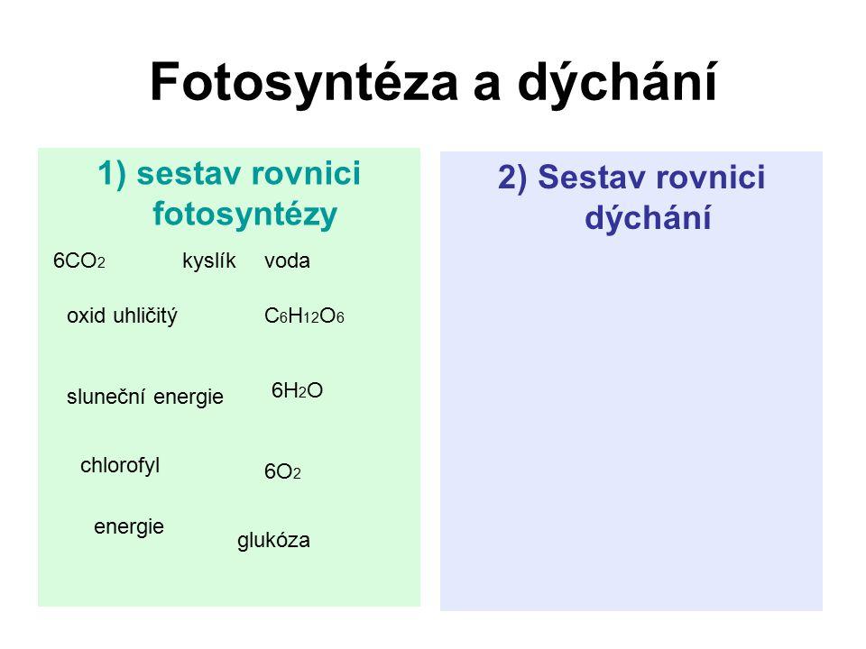Fotosyntéza a dýchání 1) sestav rovnici fotosyntézy 2) Sestav rovnici dýchání 6CO 2 kyslíkvoda oxid uhličitýC 6 H 12 O 6 sluneční energie 6H 2 O chlor