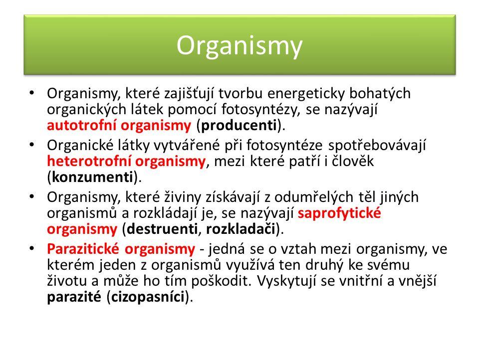 Organismy Organismy, které zajišťují tvorbu energeticky bohatých organických látek pomocí fotosyntézy, se nazývají autotrofní organismy (producenti).