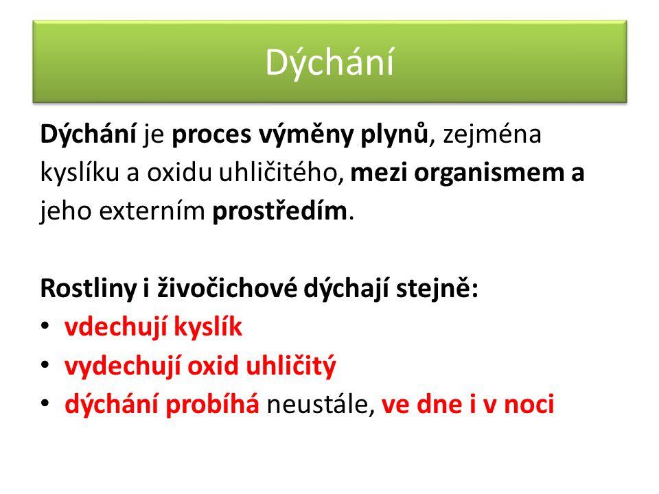Shrnutí a opakování  Čím se liší dýchání a fotosyntéza.