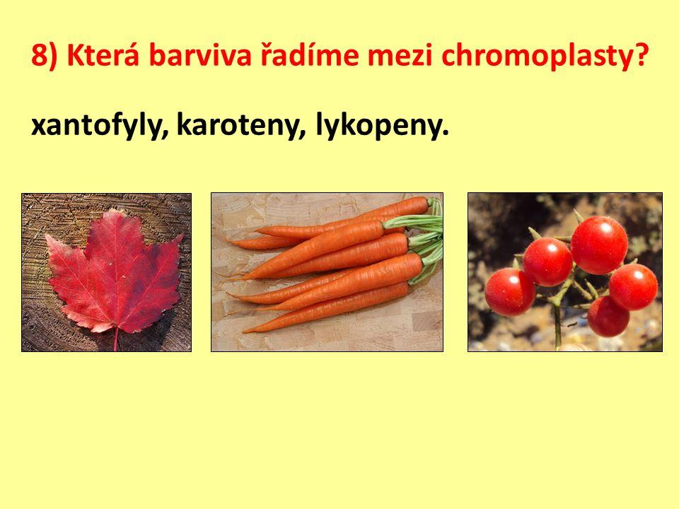 8) Která barviva řadíme mezi chromoplasty xantofyly, karoteny, lykopeny.