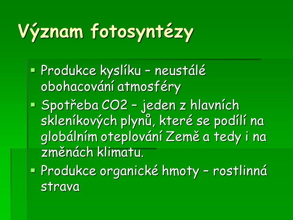 Fotosyntéza probíhá ve dvou fázích – světelné (ve dne) a temnostní (v noci).