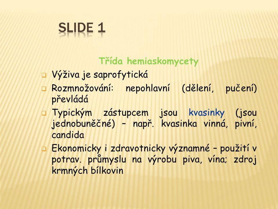 Obr. 13 Rez vejmutová Obr. 14 Rez žitná