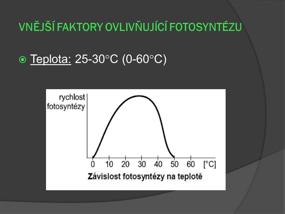 VNĚJŠÍ FAKTORY OVLIVŇUJÍCÍ FOTOSYNTÉZU  Teplota: 25-30  C (0-60  C)