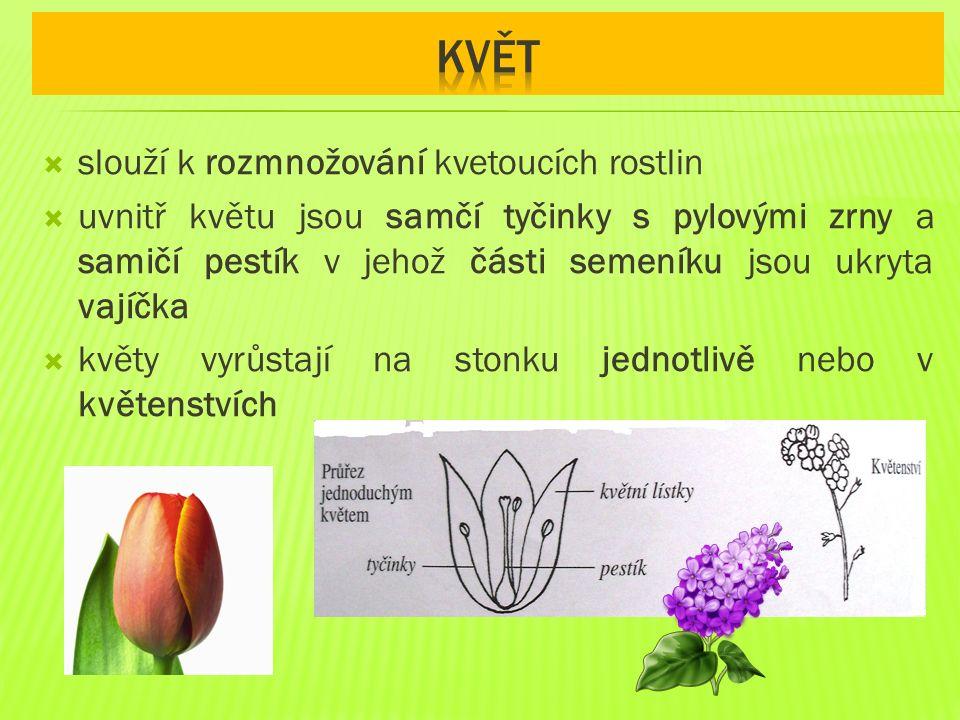  slouží k rozmnožování kvetoucích rostlin  uvnitř květu jsou samčí tyčinky s pylovými zrny a samičí pestík v jehož části semeníku jsou ukryta vajíčka  květy vyrůstají na stonku jednotlivě nebo v květenstvích