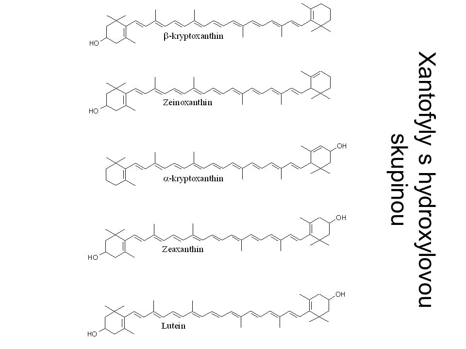 Xantofyly s hydroxylovou skupinou
