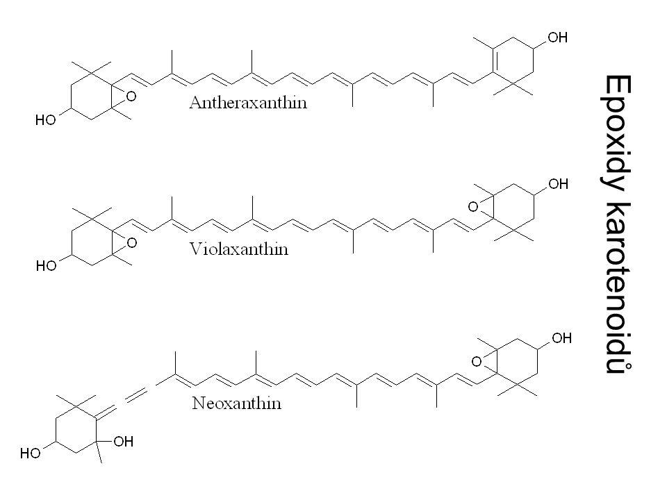 Epoxidy karotenoidů
