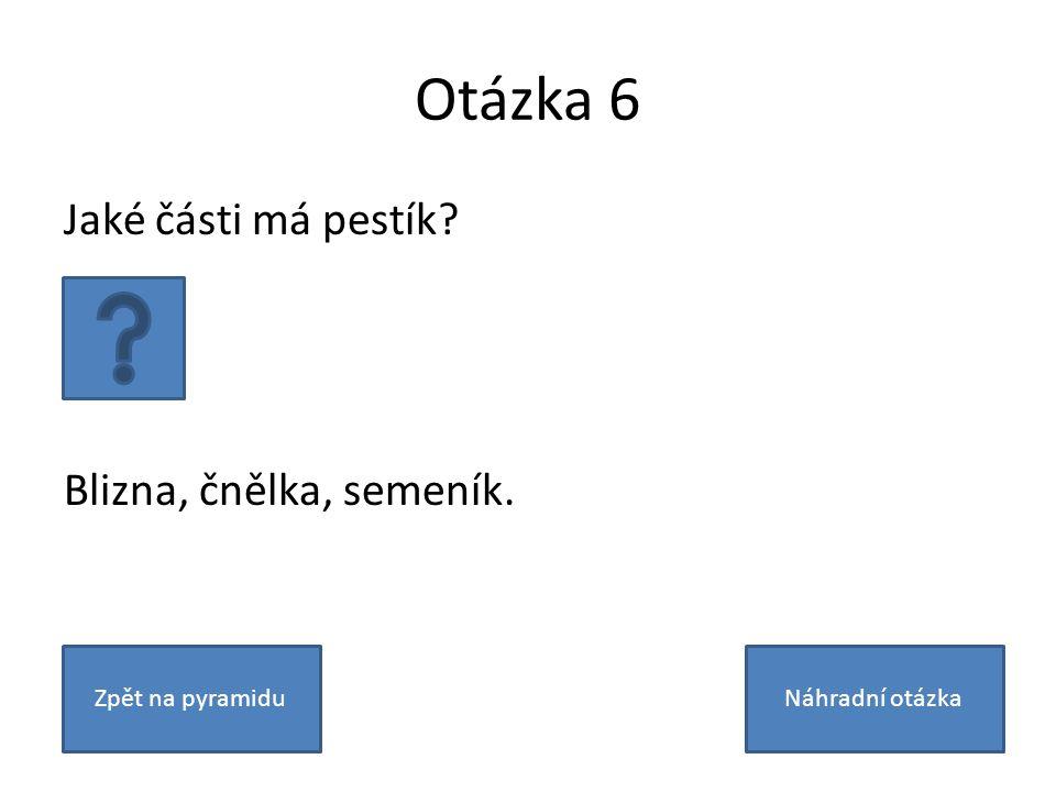 Otázka 6 Jaké části má pestík Blizna, čnělka, semeník. Zpět na pyramiduNáhradní otázka