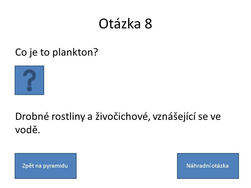 Otázka 8 Co je to plankton. Drobné rostliny a živočichové, vznášející se ve vodě.