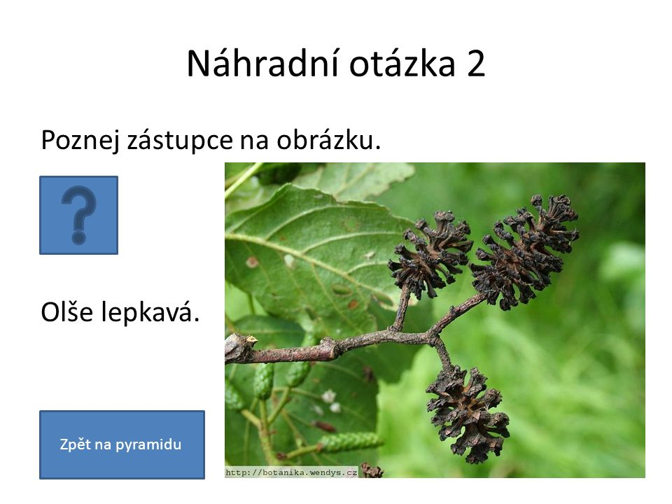 Otázka 3 Co je to rostlinné společenstvo.Soubor všech druhů rostlin.