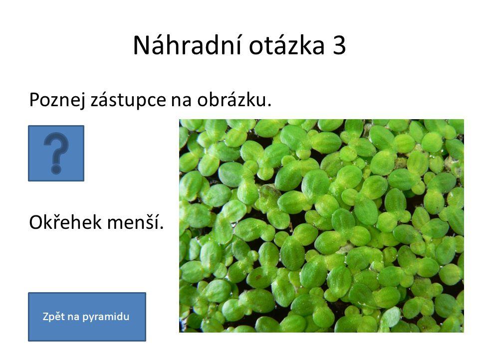 Otázka 9 Jmenujte dvě zelené řasy. Zelenivka, šroubatka a další. Zpět na pyramiduNáhradní otázka
