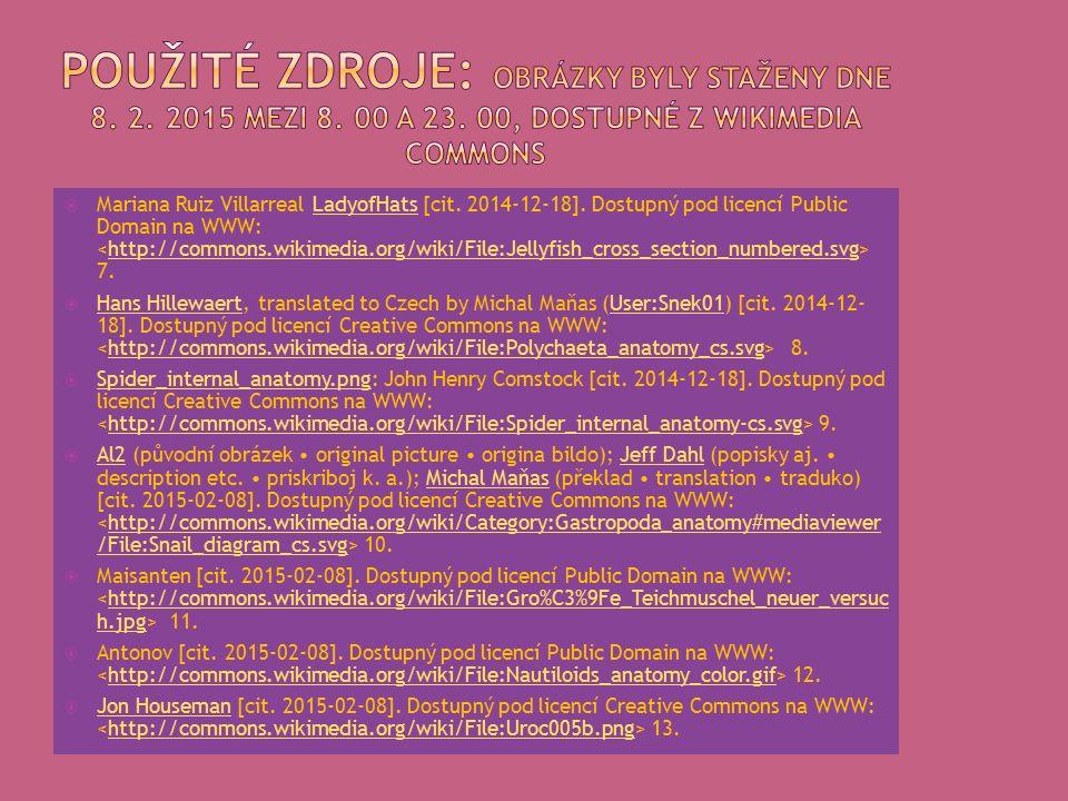  Mariana Ruiz Villarreal LadyofHats [cit. 2014-12-18].