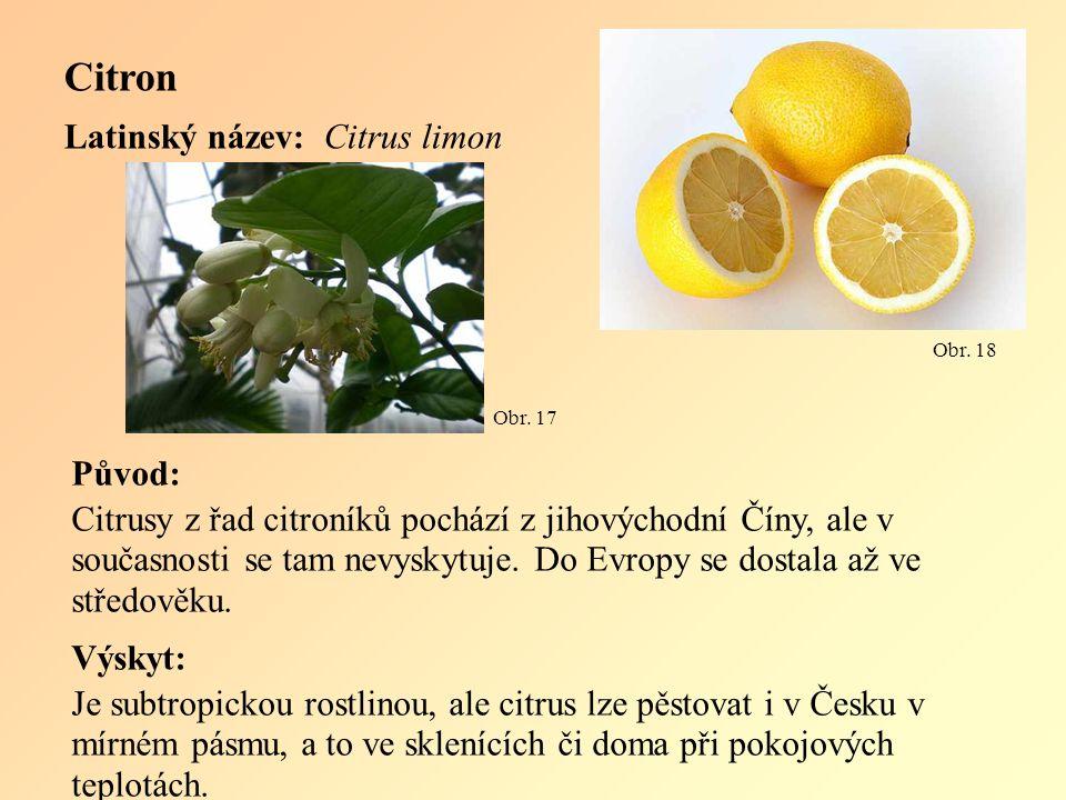 Citron Latinský název: Citrus limon Původ: Citrusy z řad citroníků pochází z jihovýchodní Číny, ale v současnosti se tam nevyskytuje.