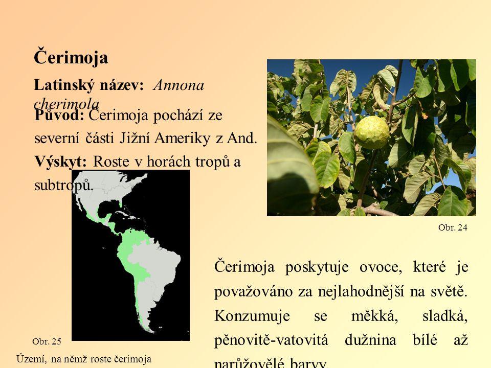 Čerimoja Latinský název: Annona cherimola Čerimoja poskytuje ovoce, které je považováno za nejlahodnější na světě.