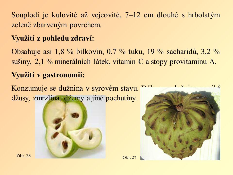 Souplodí je kulovité až vejcovité, 7–12 cm dlouhé s hrbolatým zeleně zbarveným povrchem.