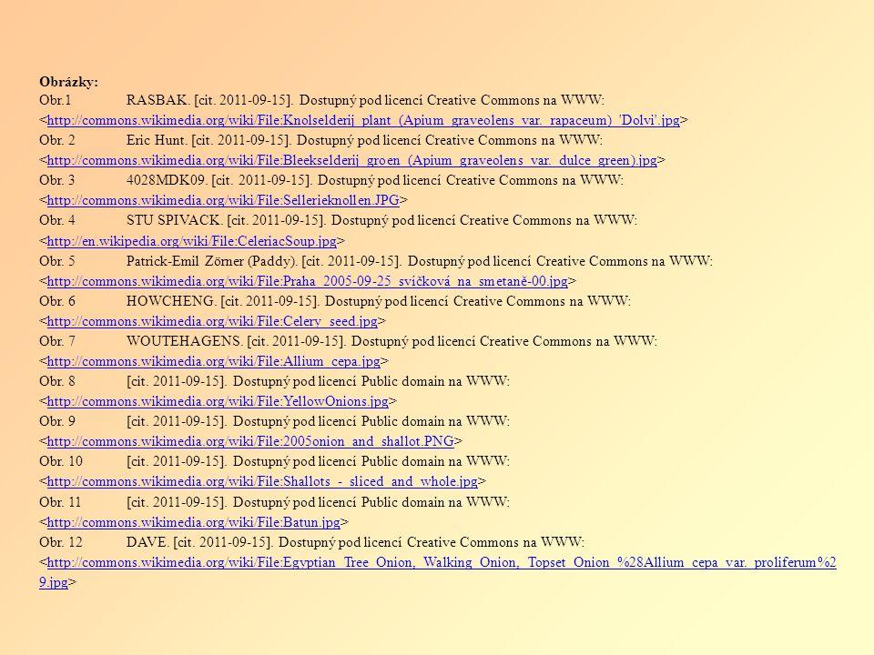 Obrázky: Obr.1RASBAK. [cit. 2011-09-15].