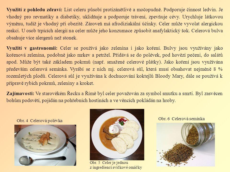 Česnek Celý název: Česnek kuchyňský Latinský název: Allium sativum Původ: Česnek kuchyňský patrně pochází ze střední Asie, kde vznikl z planého druhu Allium longicuspis.
