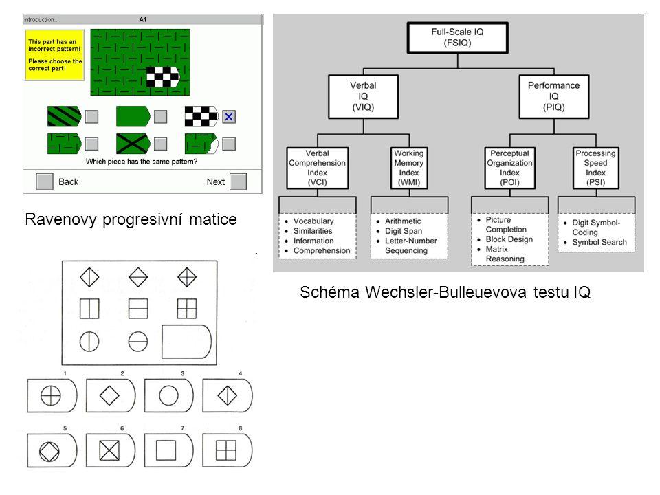 Ravenovy progresivní matice Schéma Wechsler-Bulleuevova testu IQ