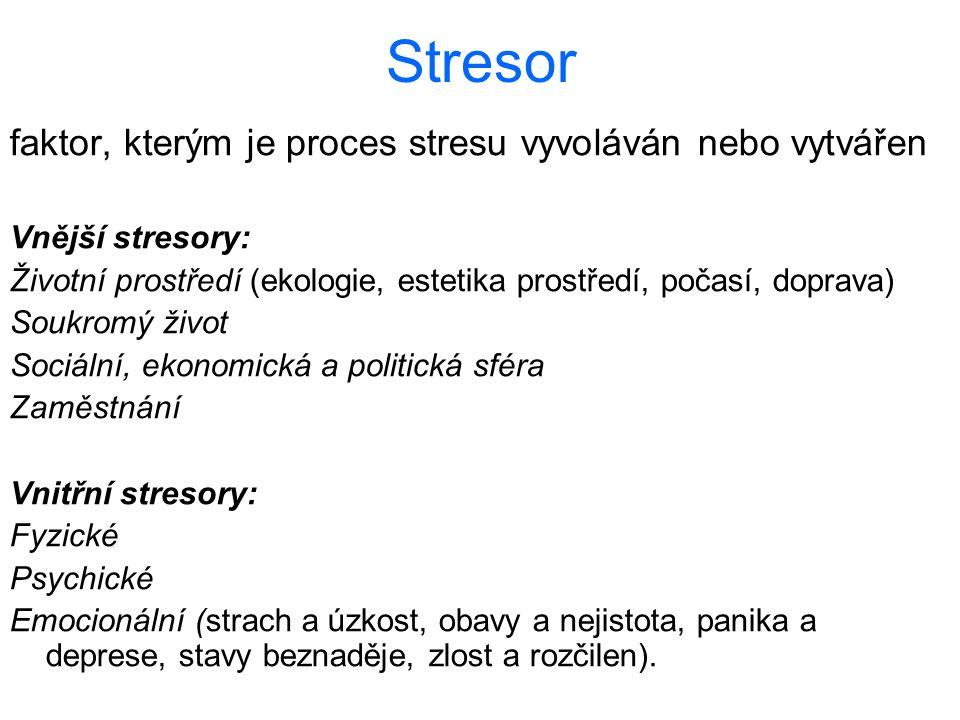 Stresor faktor, kterým je proces stresu vyvoláván nebo vytvářen Vnější stresory: Životní prostředí (ekologie, estetika prostředí, počasí, doprava) Sou