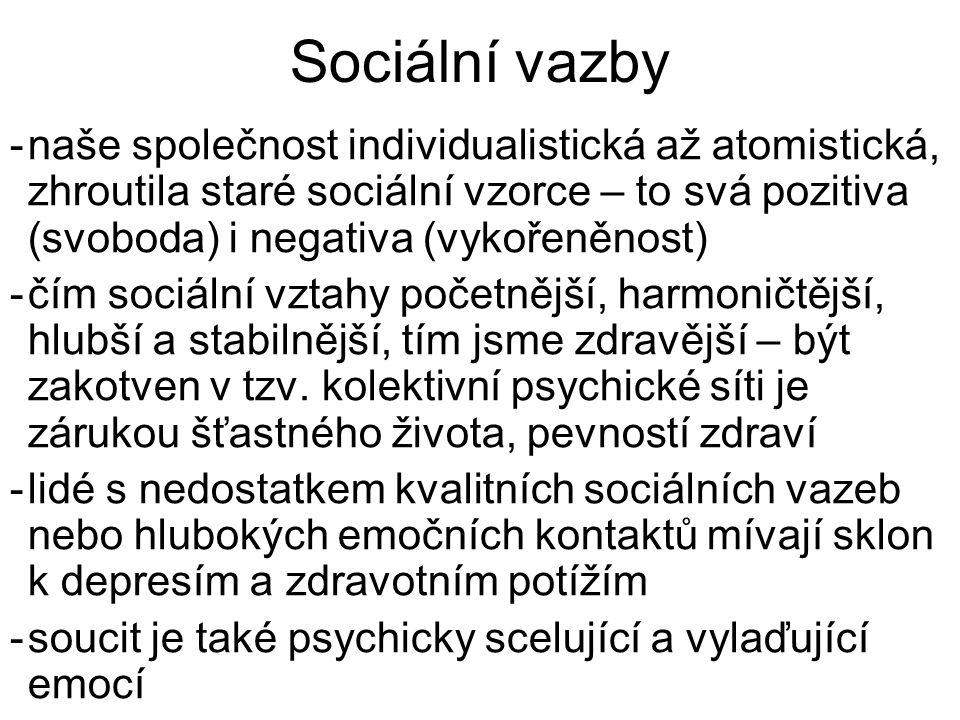 Sociální vazby -naše společnost individualistická až atomistická, zhroutila staré sociální vzorce – to svá pozitiva (svoboda) i negativa (vykořeněnost