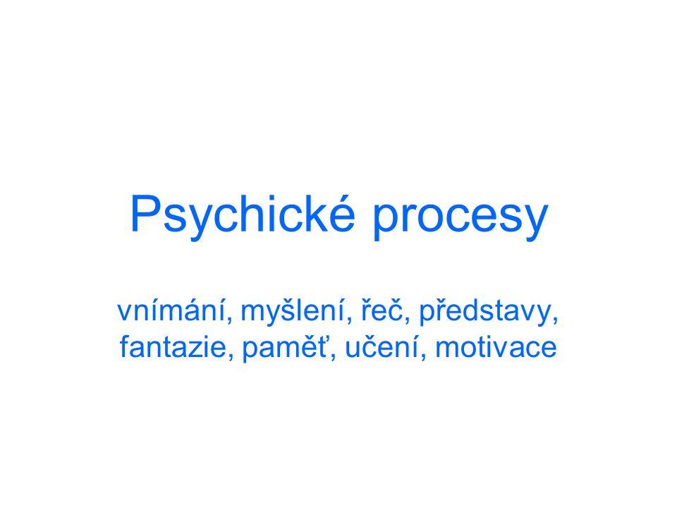 Psychické procesy vnímání, myšlení, řeč, představy, fantazie, paměť, učení, motivace