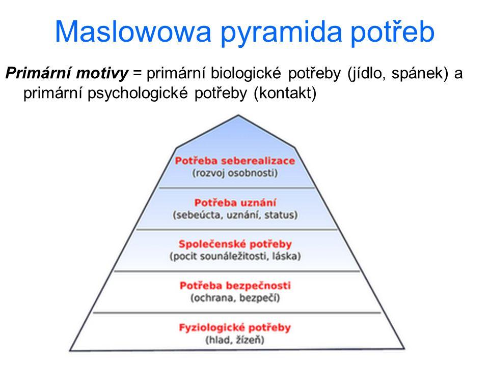 Maslowowa pyramida potřeb Primární motivy = primární biologické potřeby (jídlo, spánek) a primární psychologické potřeby (kontakt)